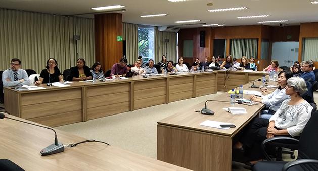 COSEMS/SP participa de Oficina técnica sobre a emergência de Febre Amarela, em Brasília