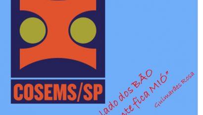 2020/2021 – DRS III Araraquara em movimentos regionais na busca de estratégias coletivas de enfrentamento ao COVID-19 – o olhar do apoio institucional COSEMS/SP